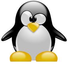 DNS-Server auf Ubuntu (Linux) überprüfen