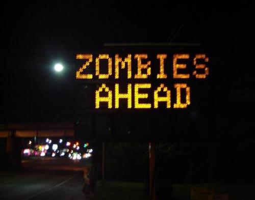 Botnetz Zombies ahead flick