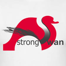 Strong Swan