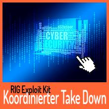 RIG Exploit Kit – Koordinierter Take Down