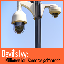 Devil's Ivy: Millionen IoT-Kameras gefährdet